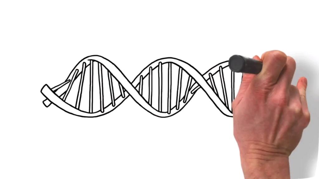 Merck Serono – Ras Biomarker